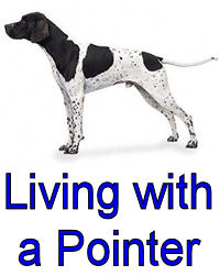 Living with a Pointer